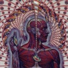 tool : lateralus