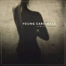 young cardinals - sunset chaser