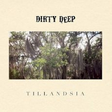Dirty Deep - Tillandsia